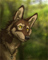 Tundra by Canis-ferox
