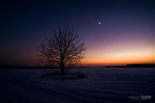 A touch of sun, Mars and Venus by NorbertKocsis