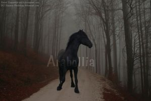 Halloween Horse Manipulation by Arabellia