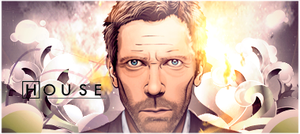 dr. house sign by met0riman