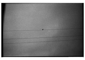 Sky above the wires by kakaoconad