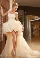 Organza-sweetheart-a-line-fashion-hi-lo-weddin by whiteazalea