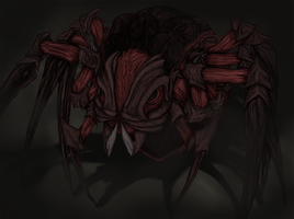 Spider by Archayon