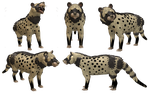 Spore Creature: African Civet by Evilution90