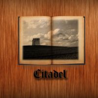 Citadel - Cover by Gothguy720