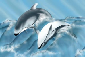 Taiji Targets | Pacific White Sided Dolphins by Hysazu