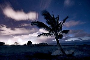 Pacific Nightd by sublogic