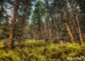 The Illusion HDR by mjohanson