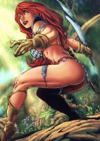Red-sonja-in-scale-armor-gaunlet-and-sword-pho by talha122