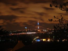 Jozi in the night by NagWolf