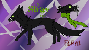 Stray Feral Reference by Nythero