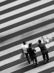 Crossing the Stripes by STOOPIDTHING