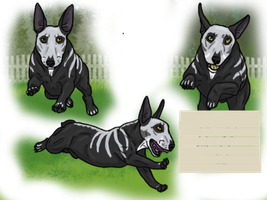 Zwei flyball KC titles - all levels by modifiedMONSTER