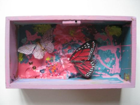 Butterfly box 2011 by beatrixxx