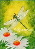 Dragonfly  - Commission by Katerina-Art