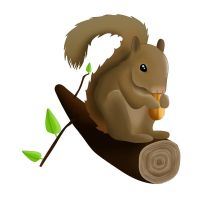 Squirrel by mesign