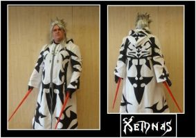 Xemnas Front and Back by sjbonnar
