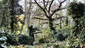 Highgate Cemetery IV by sonicdevil93