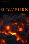 Slow Burn Pack by wyldangel-stock