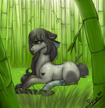 Comission-11 by saracentric