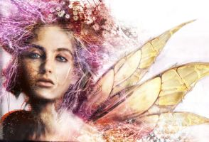 fairy by optiknerve-gr