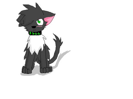 Milechy cat by Rocketeam4shadow