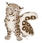 Chocolate Snow Leopard Cub by graphiteforlunch