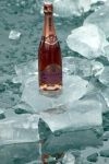 Pink Champagne on Ice by organicvision