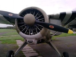 Radial Engine by alanhay