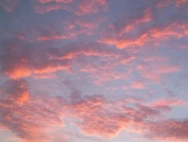 Orange and Pink Sky 2 by chelsmith18