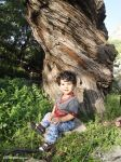 Arshia with magic tree by absdostan