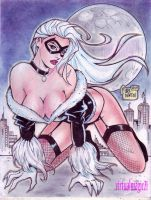 BLACKCAT by RODEL MARTIN (10122013) by rodelsm21