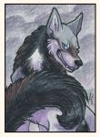 ACEO Card - Ever-grin by ARVEN92