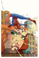 Spidey by amilcar-pinna