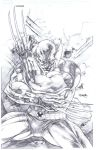 Wolverine Commission by sjsegovia