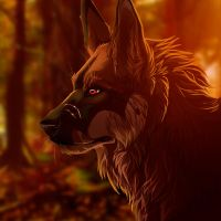 Evesske icon.comm 1 by WolfRoad