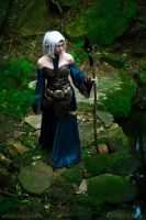 Dragon Age: Origins - Elvhenan 5 by HayleyElise