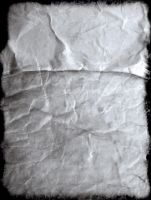 Paper Texture by SerapStock
