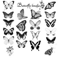 Butterfly Brushes by shahar12