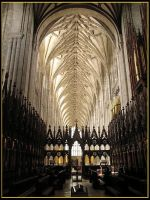 Winchester Cathedral by parallel-pam