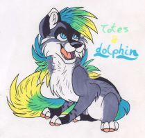 Totes a Dolphin by mashaheart