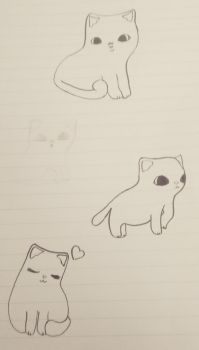 Cat drawing practice by Rosie94427