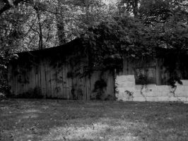 Not a Loveshack b+w by Exactually