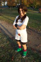 Videl cosplay by Tanpopo89