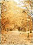 Snowy autumn... by Aur3lijus
