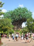 Disney World Trip part1 026 by ive1always1loved1you