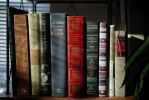 What's On Your Shelf? by BrandonCWatson
