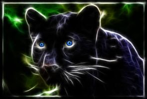 The Panther by RiegersArtistry