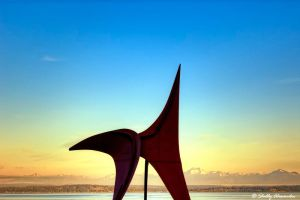 Olympic Sculpture Park Eagle 1 by UrbanRural-Photo