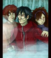 HP DH - The Trio by DraconisCrescendo
